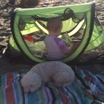 Toddler Travel Must Haves - Peapod Light Weight Travel Crib