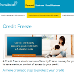 TransUnion Child Credit Freeze Summary