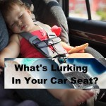 Concerning Chemicals Found in Orbit Baby and Other Car Seats